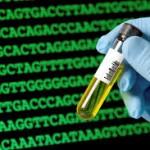 دقت و صحت آزمون ژنتیکی صددرصد است