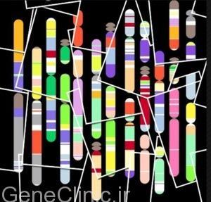 سخنرانی: ژنتیک دیستروفی های عضلانی
